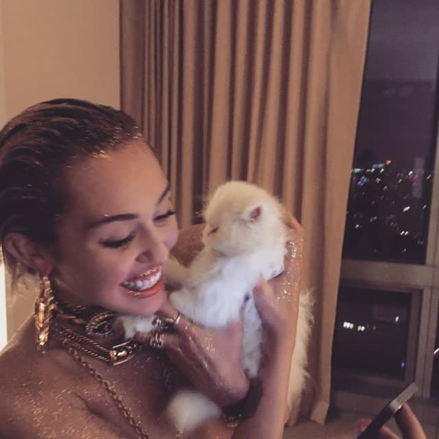 Miley Cyrus tem fotos intimas pelada vazadas por hacker confira 12