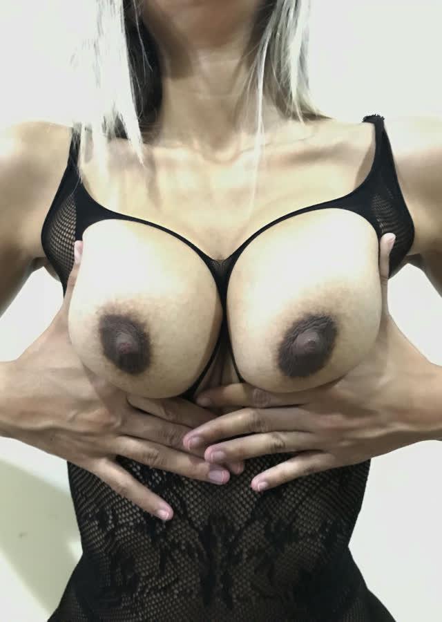 xereca-peluda-2